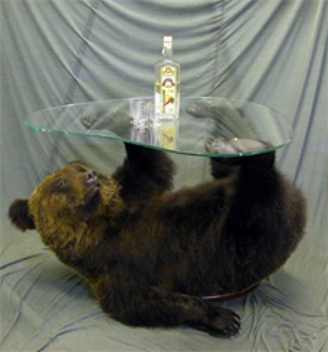 Как сделать чучело медведя своими руками 19