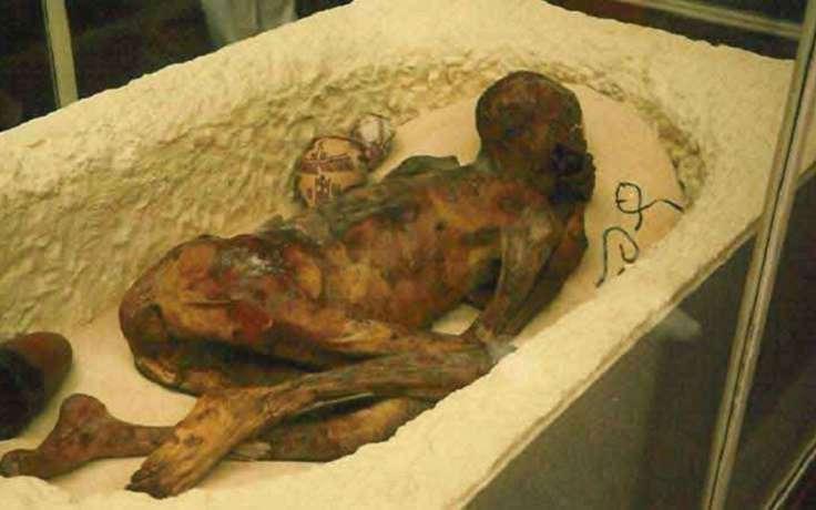 нас реальные фото мумии с луны бенцони отобрали
