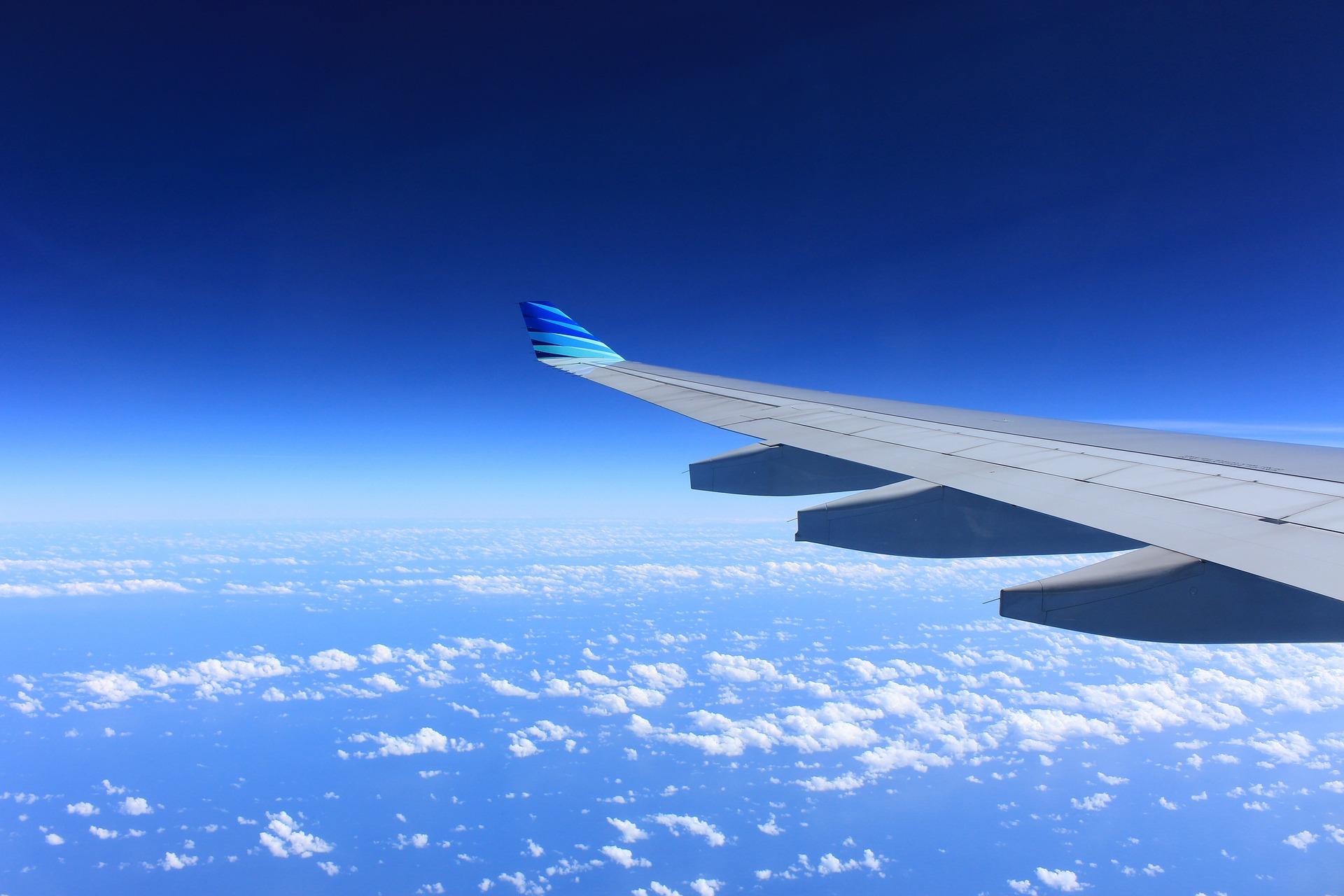 картинки авиалайнера в полете известный диетолог, который