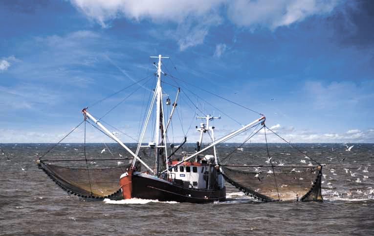 рыболовное судно рыбак