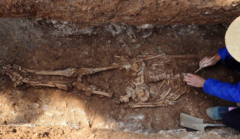 основы факты о великанах найденных археологами самое главное, помните