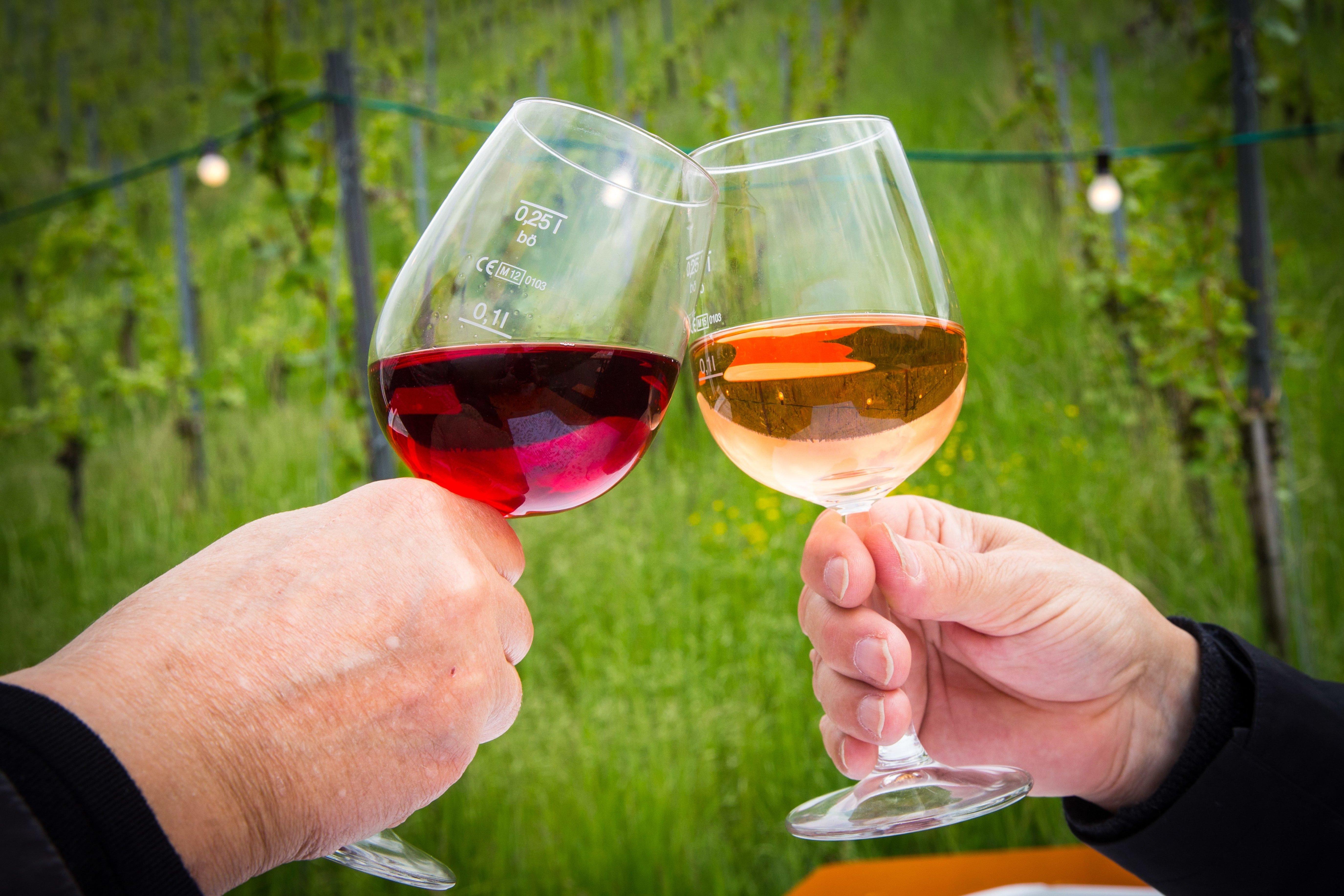 Вино фото и дети