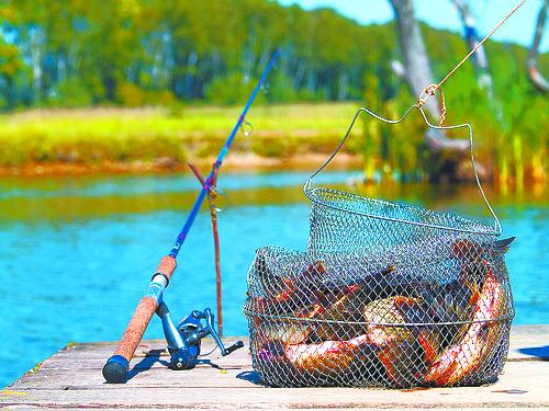 млн рыболовов
