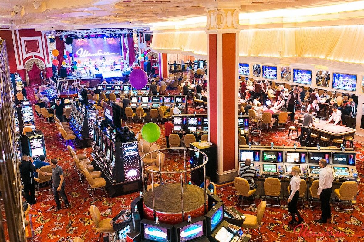 казино оракул работает еще