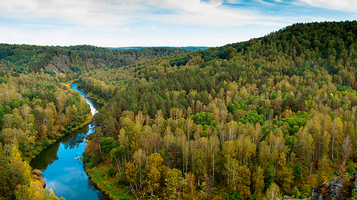 Красивые, картинки смешанных лесов дальнего востока