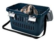 Животных разрешили перевозить в плацкарте