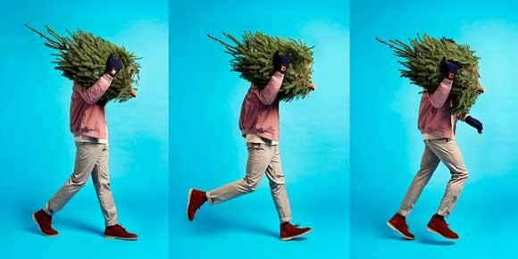 ВВоронеже будут бесплатно доставлять новогодние елки
