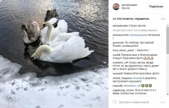 Фоторабота Дмитрия Медведева