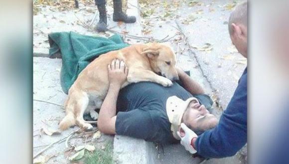 Собака обнимет хозяина