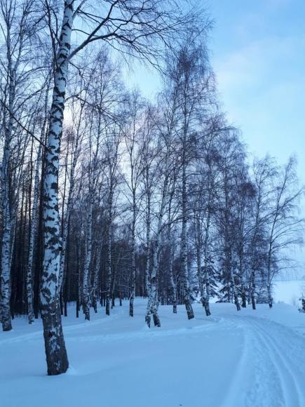 Синоптики прогнозируют в Москве мороз  минус 20 градусов  в ночь на 6 марта