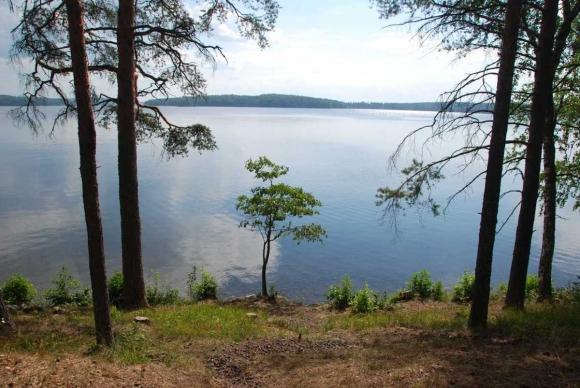 Путевые заметки. Финляндия часть третья. Pori, Tampere, Savonlinna, Punkaharju
