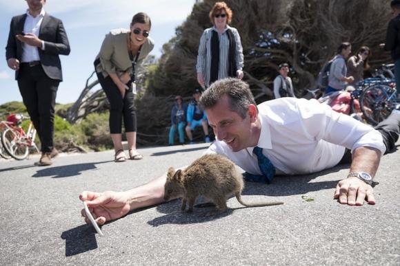 """Живут же люди! Австралия:«ядовитый» континент, преступники, """"Летающий доктор"""""""