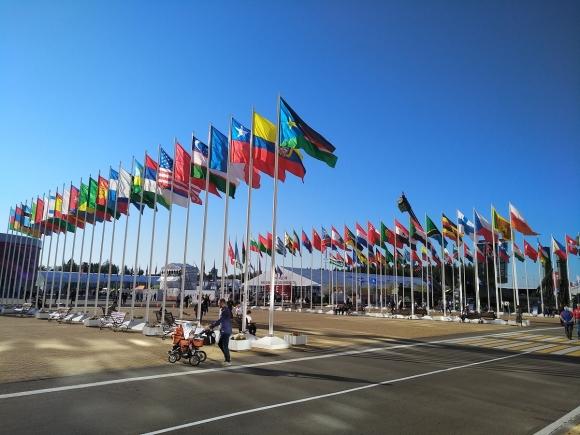 Флаги стран-участников форума