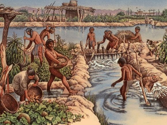 Живут же люди! Суринам – страна джунглей, маронов и «телефонных» переворотов