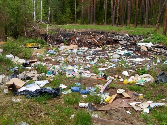 По данным Greenpeace, в России 960 тысяч несанкционированных мусорных свалок. Их число удваивается каждый год