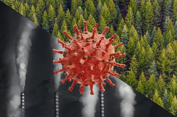 Пока экономика выходит из кризиса, экология в него погружается