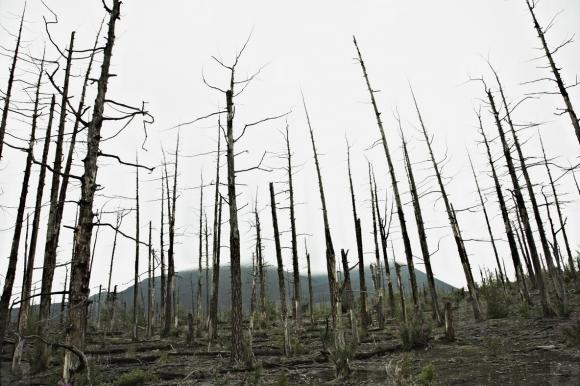 Разработка кимберлитовой трубки «Удачная» отравила реку Далдын, в Якутии