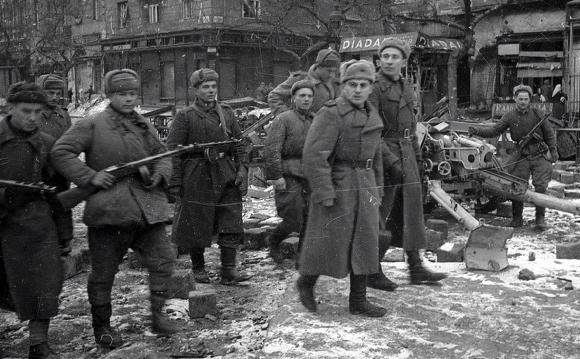Сводка Совинформбюро за 29 ноября 1944 года