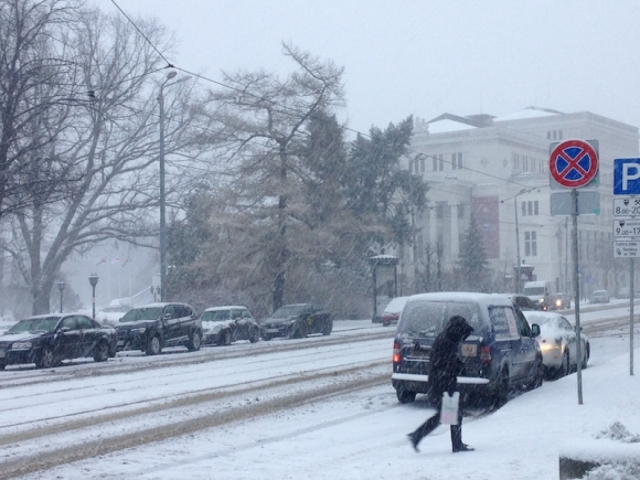 Латвию замело снегом