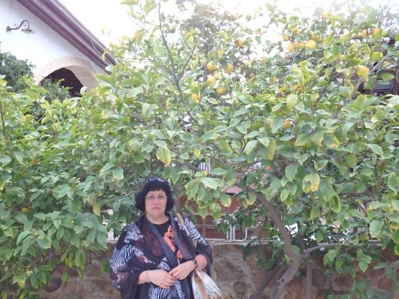 Святая Фекла: заступница и помощница женщинам