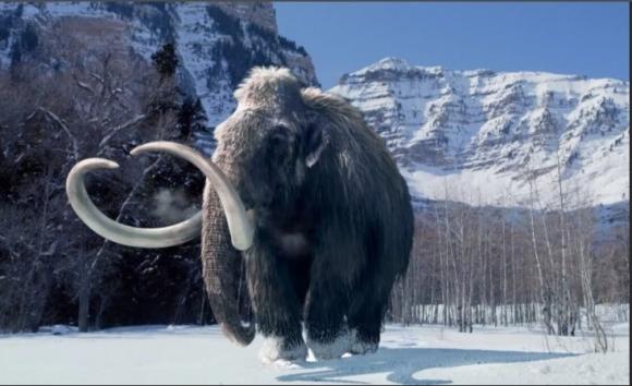 Якутские учёные планируют клонирование мамонтов