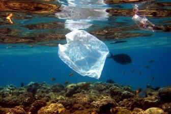 На дне Марианской впадины обнаружили пластиковый мусор